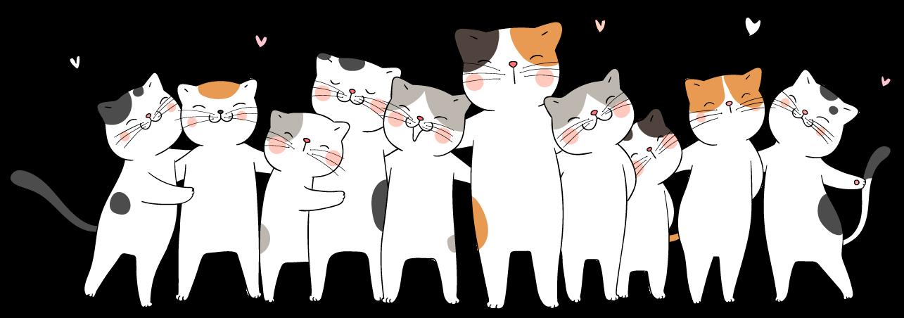 tienda online bigotes felinos